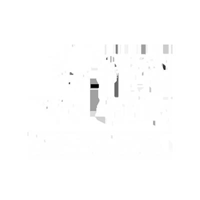 clean tech partner
